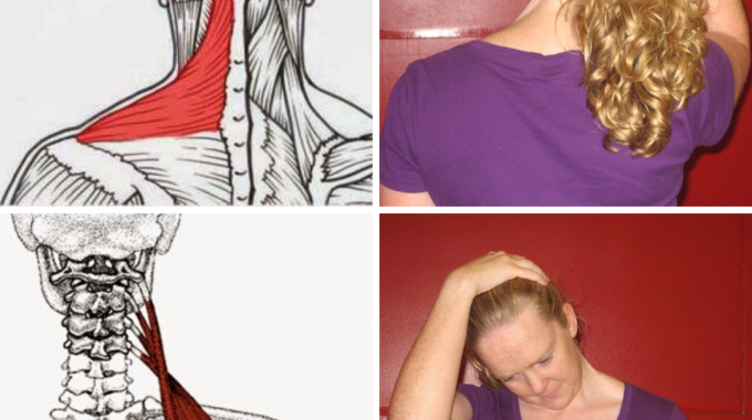 Stretch Of The Month: Shoulder Stretches